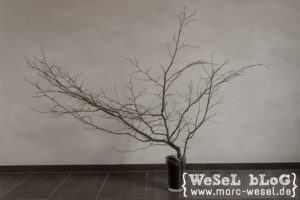 DIY Herbstbaum - Kreativ mit Papier