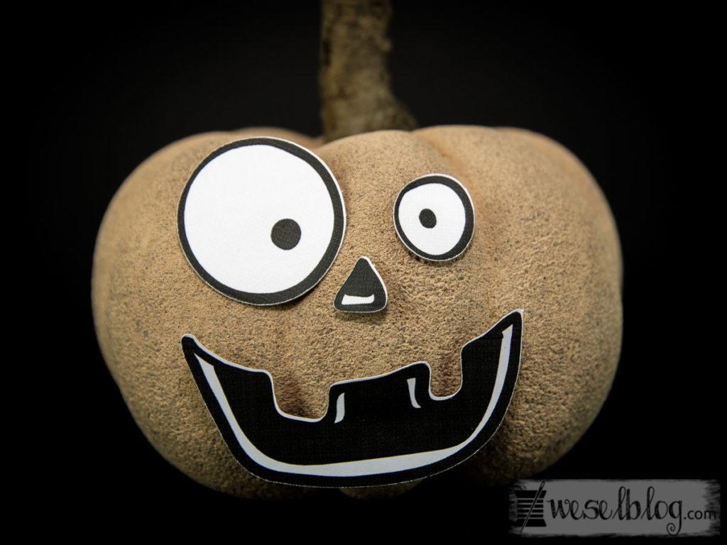 Beton Kürbis Halloween Edition